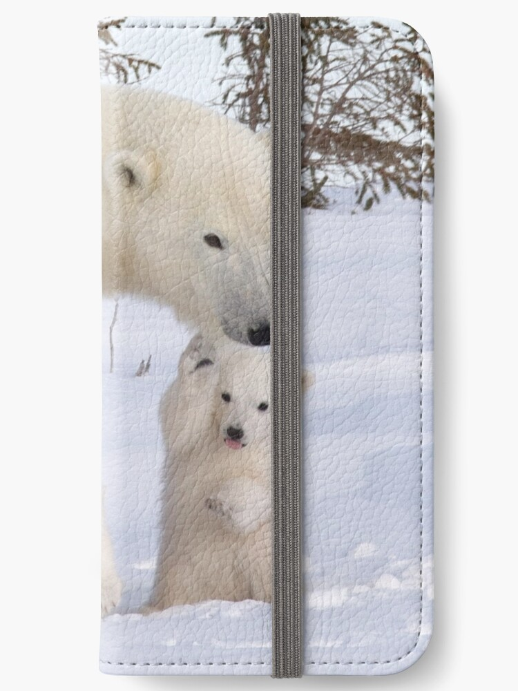 Mother polar bear & her two cubs by Marion Joncheres