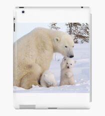 Mother polar bear & her two cubs iPad Case/Skin