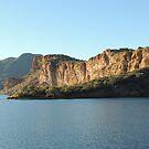 Cliffs at Saguaro Lake,  Arizona by Verna  Perry
