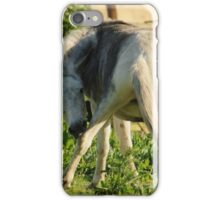Just Lickin' My Knee iPhone Case/Skin