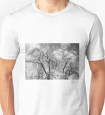 trees wear winter T-Shirt