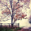 In the Garden of Autumn by JOSEPHMAZZUCCO