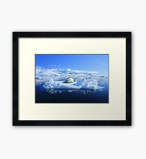 Leopard Seal Framed Print
