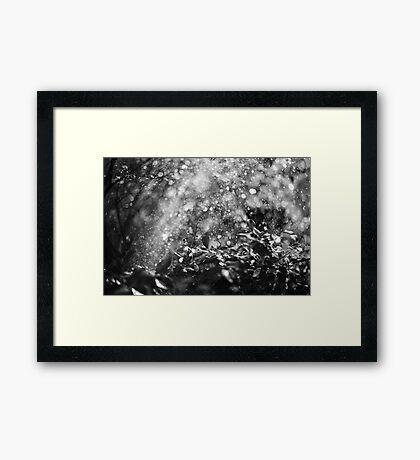 chaos of bokeh Framed Print