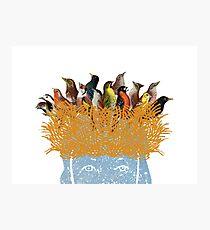 Bird nest head Photographic Print