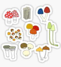 Pegatina Familias de hongos