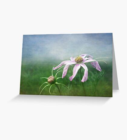 Meadow Sweet Greeting Card