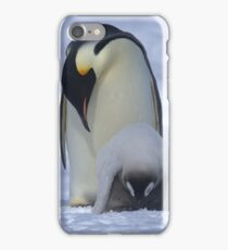 Emperor Penguin and Chick iPhone Case/Skin