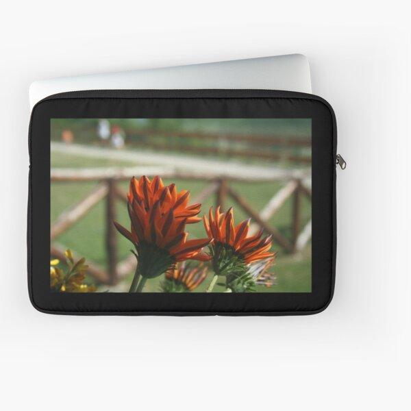 Flowers - African Daisy Laptop Sleeve