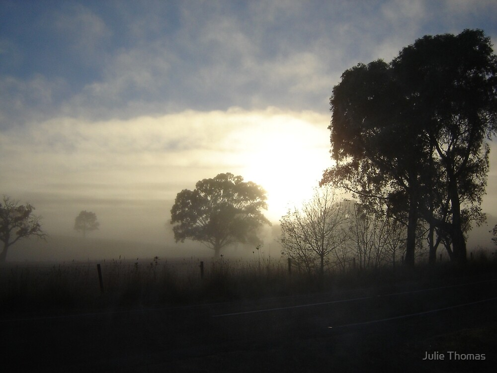 Early Morning Fog by Julie Thomas