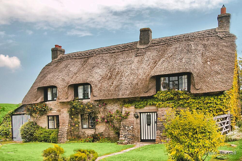 Dorset Cottage . by Irene  Burdell