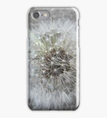 Flowers & Concrete iPhone Case/Skin