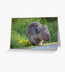 Photogenic Wombat Greeting Card