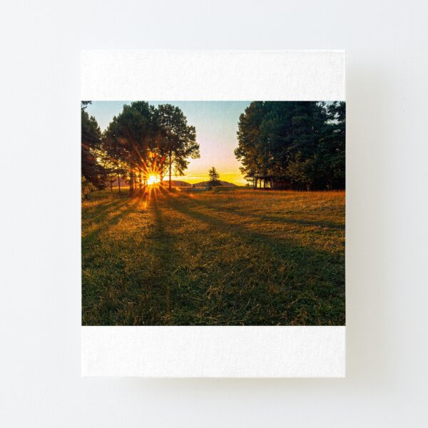 The Sun breaks through the trees at days end Canvas Mounted Print