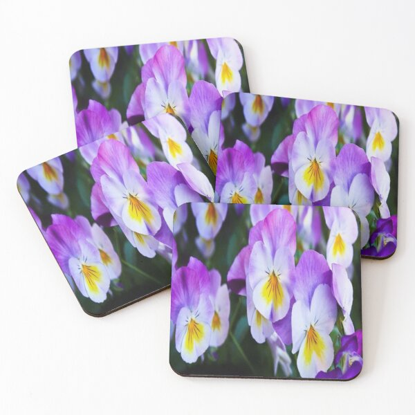 pansy flowers Coasters (Set of 4)