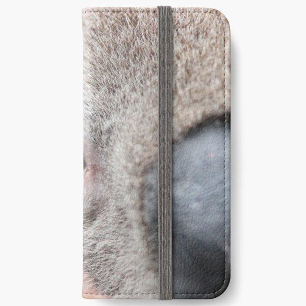 Koala Clancy - I've got my eye on you! iPhone Wallet
