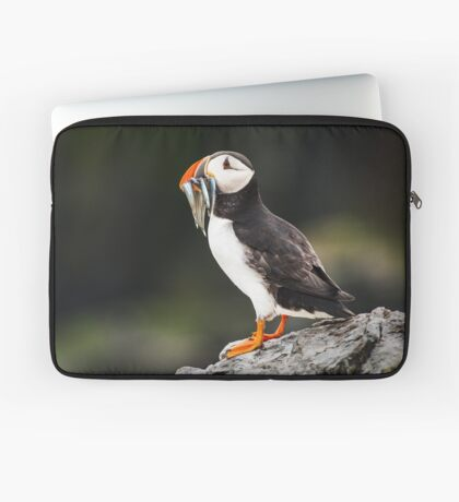 Puffin with Sandeels Laptop Sleeve
