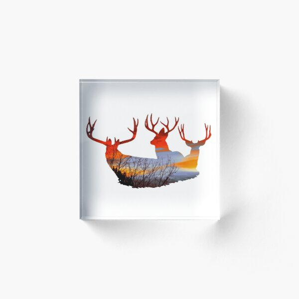 Mule deer buck sunset Acrylic Block