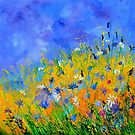 Wild flowers 8861 by calimero