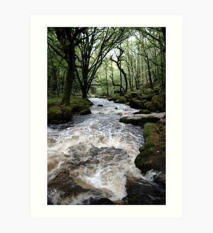 Golitha Falls - Cornwall Art Print