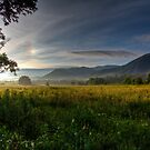 June Morning in Cades Cove HDR by Douglas  Stucky
