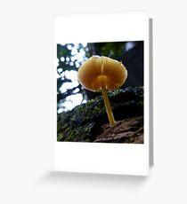 Fungi 1 Greeting Card