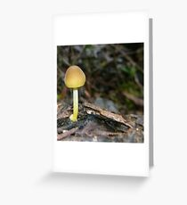 Fungi 4 Greeting Card