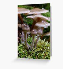Fungi 5 Greeting Card