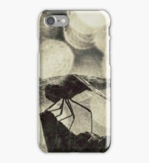 In The Dragons Lair iPhone Case/Skin