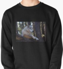 Timber Wolf Sentinel Pullover