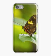 Perched on a  Leaf iPhone Case/Skin