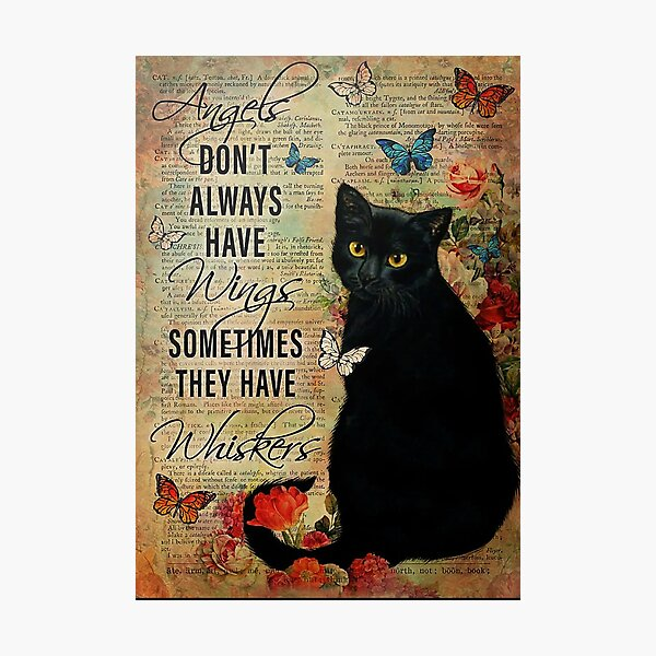 Cat Angels Don't Always Have Wings Sometimes They Have Whiskers Poster Photographic Print