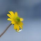A rainy day by Bente Agerup