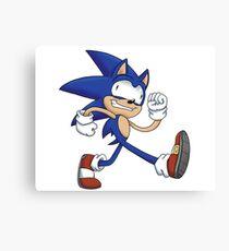 Sonicking Around Canvas Print