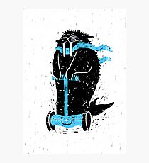 Easy Ridin' Walrus Photographic Print