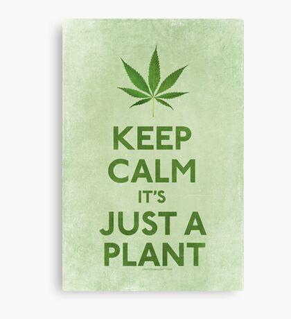 Keep Calm It's Just A Plant Canvas Print