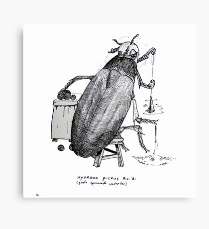 Big spinning beetle Canvas Print