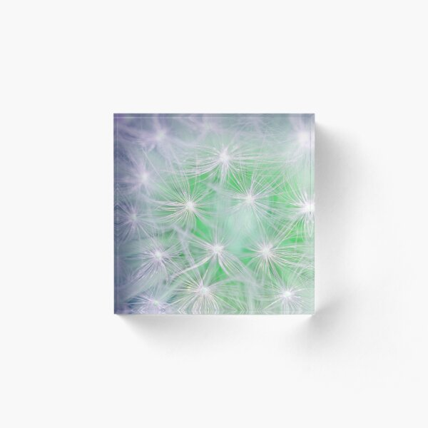 Dandelion abstract Acrylic Block
