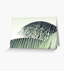 Palm frond detail against sky monochrome old- fashioned  Greeting Card