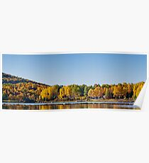 Deciduous forest reflection  Poster