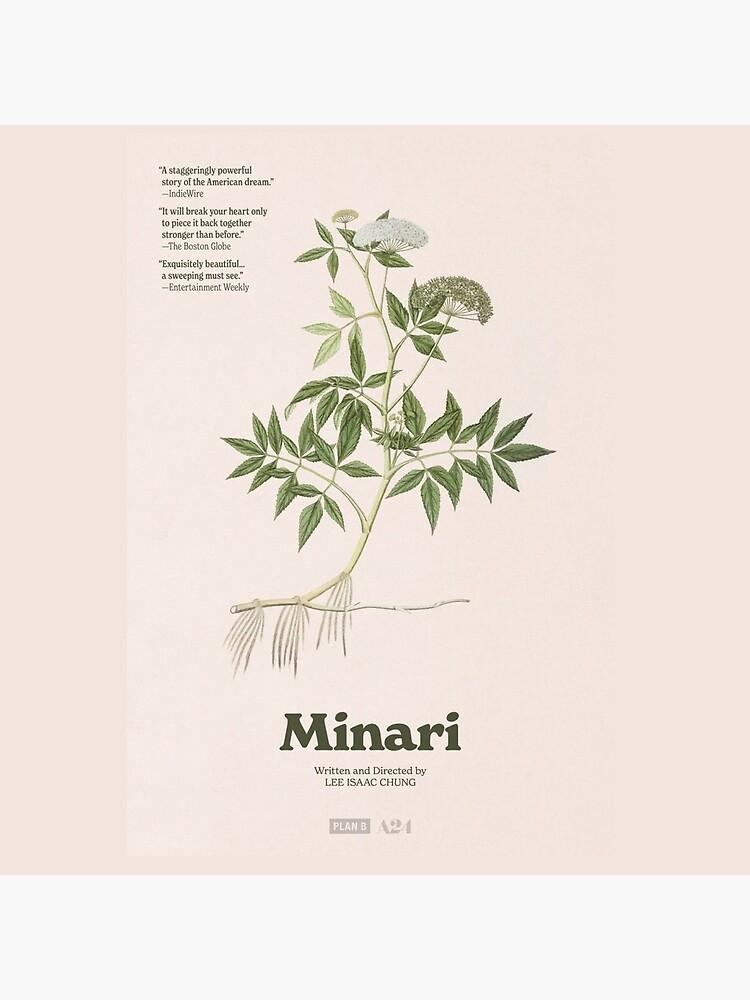 Minari (Original) by coxaboba