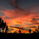 Kings Canyon Sunset by Matt Simner