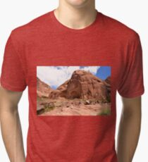 Rainbow Bridge Monument Park Tri-blend T-Shirt