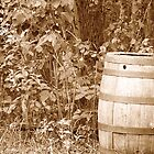 Antique Wood Barrel Left in a Forest by rhamm