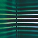 Linear Geometric Functions - Horizontal in Green Variation  by Buckwhite