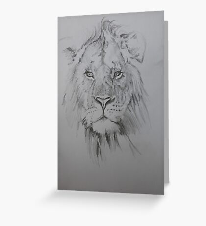 Lion-sketch Greeting Card