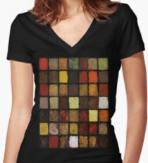 Palette of Spices Women's Fitted V-Neck T-Shirt