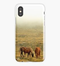 Horses in the mist iPhone Case/Skin