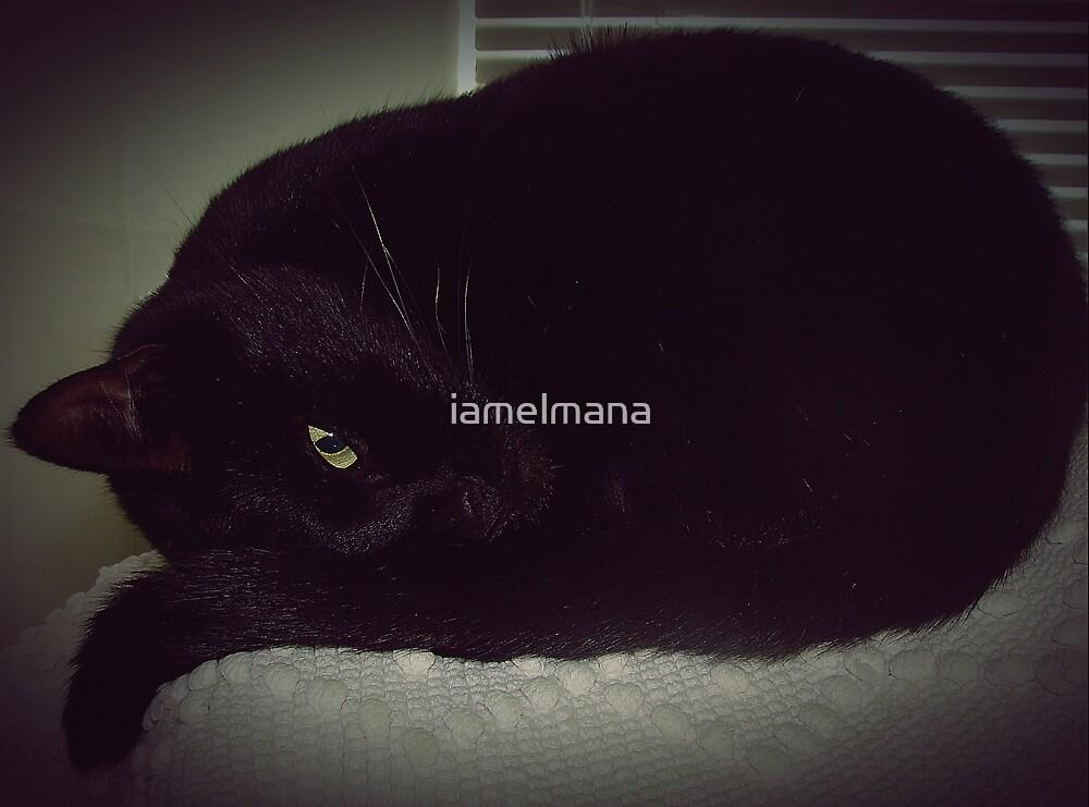 I to eye  by iamelmana