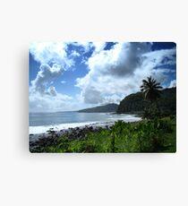 Samoan Coastline Canvas Print